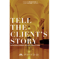Tell the Client's Story Book
